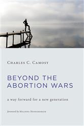 Cover of Beyond the Abortion Wars